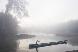 A man poles a canoe down the river Bocay in Nicaragua on a foggy morning with a Ceiba tree in the background.