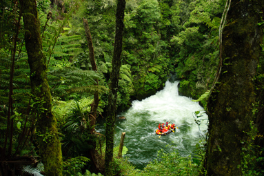 A raft in the pool below the world's highest(7 meters) commercially rafted waterfall Tutea falls.  Kaituna River, New Zealand